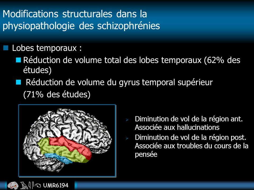 Modifications structurales dans la physiopathologie des schizophrénies