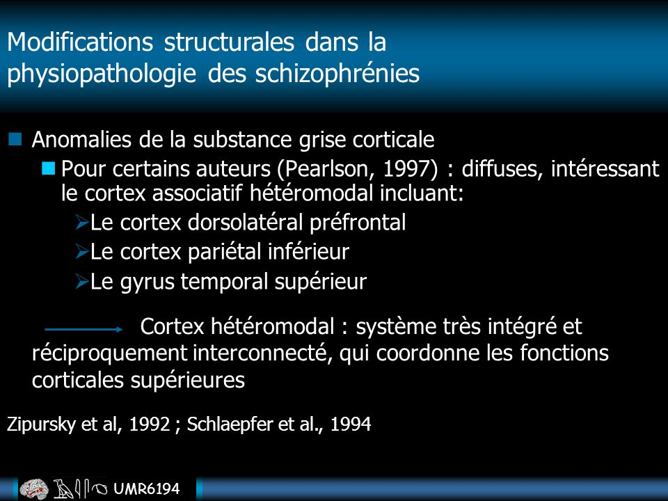 Modifications structurales dans la physiopathologie des schizophrénies