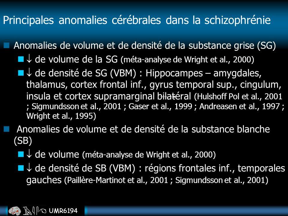 Principales anomalies cérébrales dans la schizophrénie