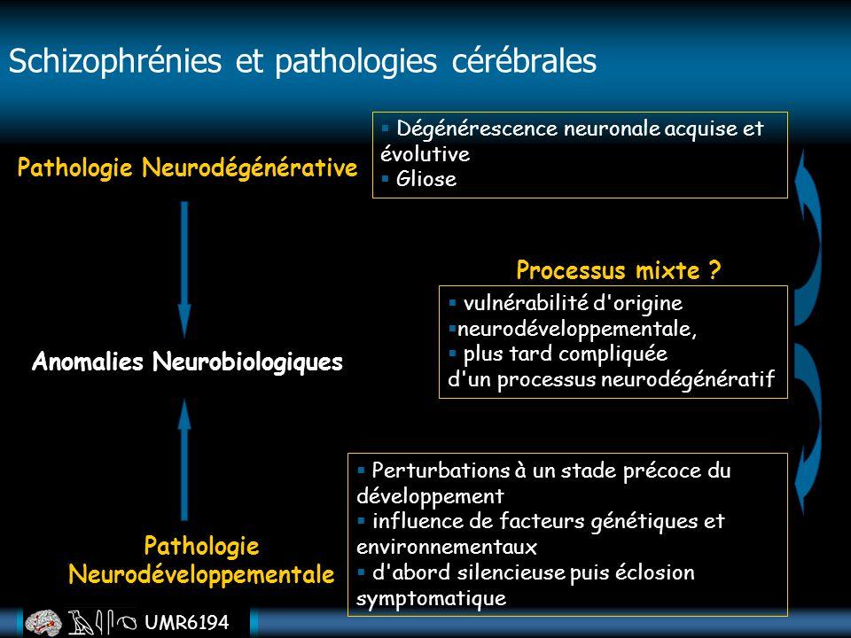 Schizophrénies et pathologies cérébrales