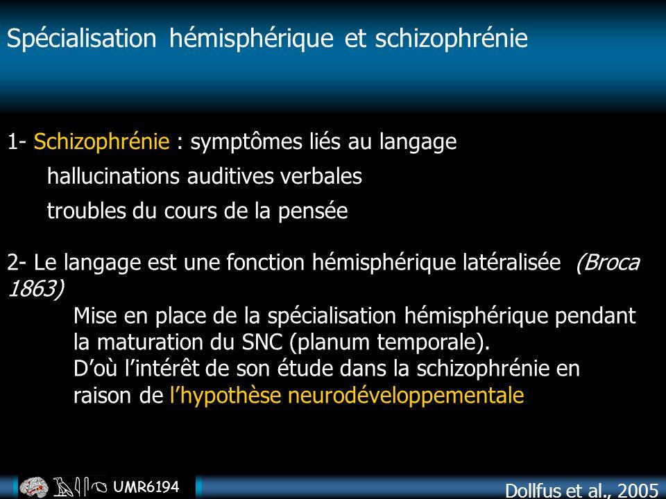 Spécialisation hémisphérique et schizophrénie