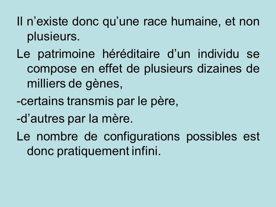 Il n'existe donc qu'une race humaine, et non plusieurs.