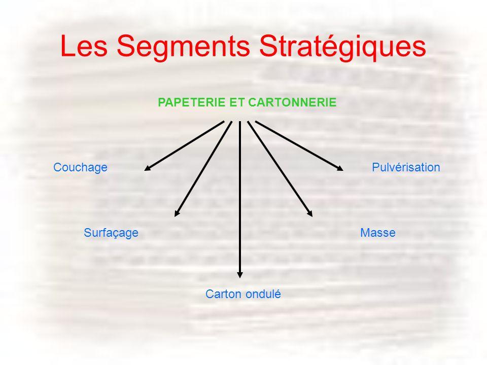 Les Segments Stratégiques