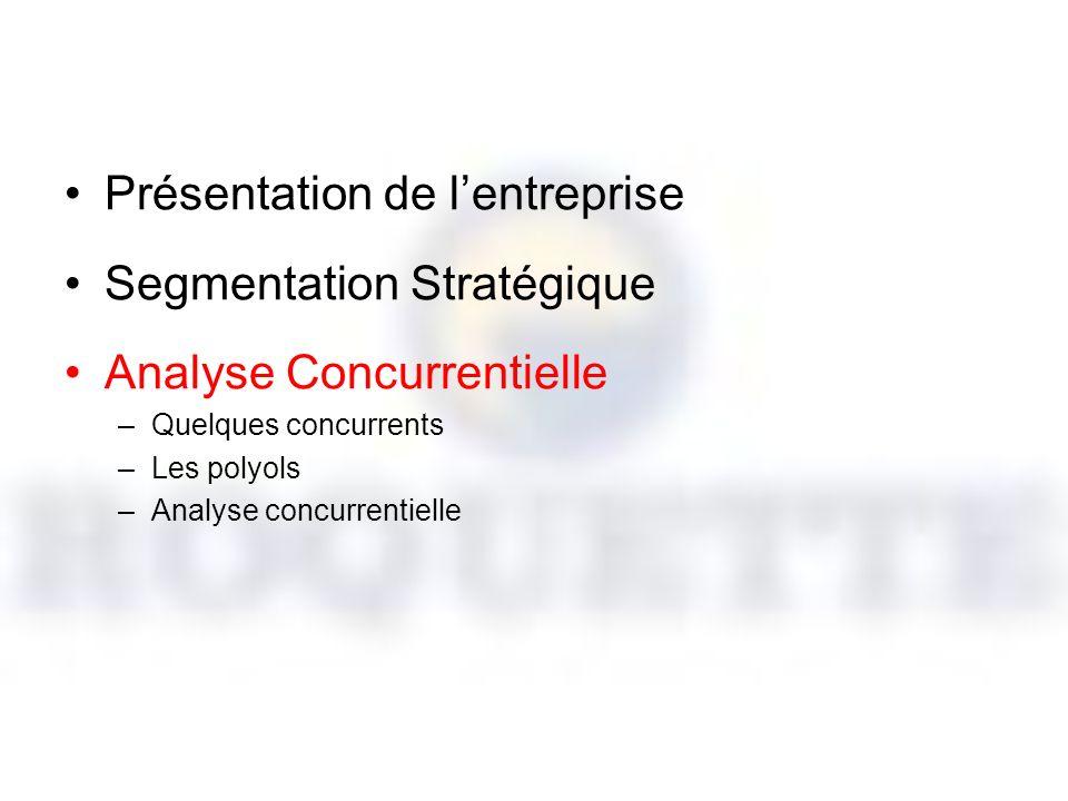 Présentation de l'entreprise Segmentation Stratégique