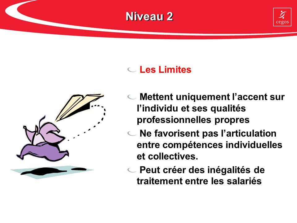 Niveau 2 Les Limites. Mettent uniquement l'accent sur l'individu et ses qualités professionnelles propres.