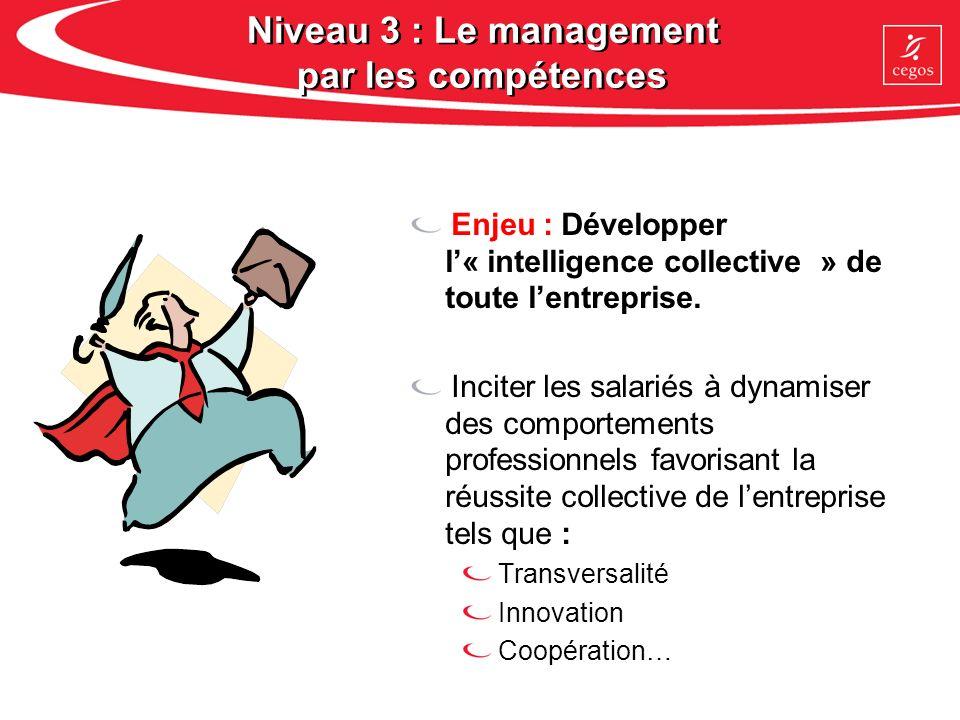 Niveau 3 : Le management par les compétences