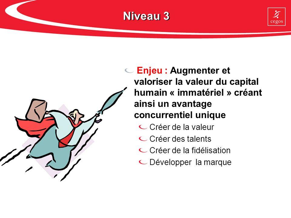 Niveau 3 Enjeu : Augmenter et valoriser la valeur du capital humain « immatériel » créant ainsi un avantage concurrentiel unique.