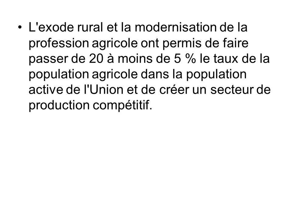 L exode rural et la modernisation de la profession agricole ont permis de faire passer de 20 à moins de 5 % le taux de la population agricole dans la population active de l Union et de créer un secteur de production compétitif.