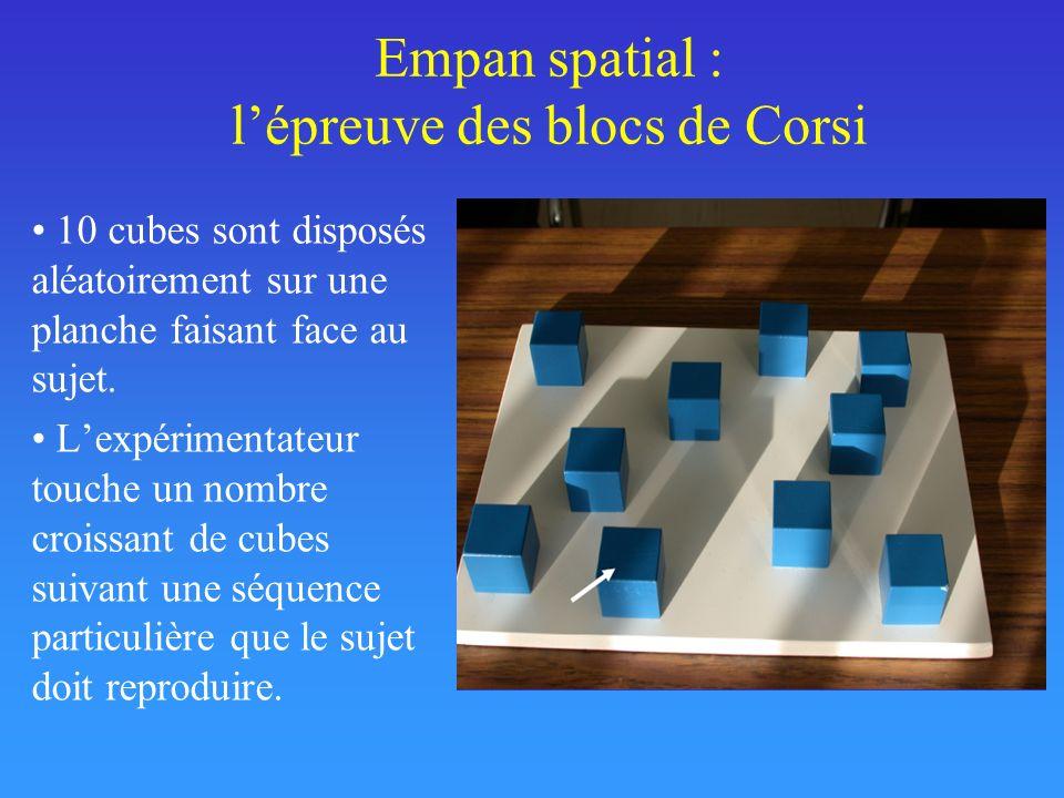 Empan spatial : l'épreuve des blocs de Corsi