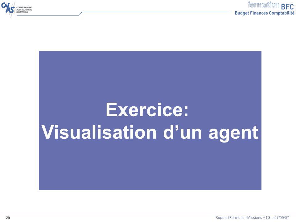 Visualisation d'un agent