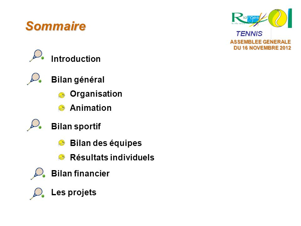 Sommaire Introduction Bilan général Organisation Animation