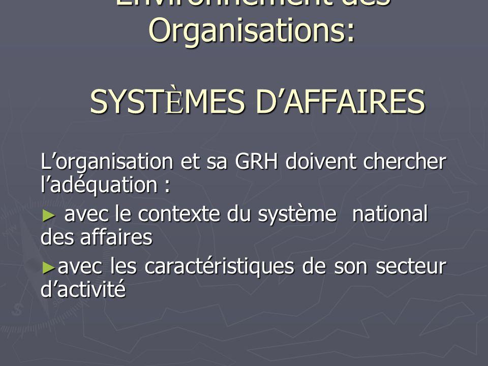 Environnement des Organisations: SYSTÈMES D'AFFAIRES