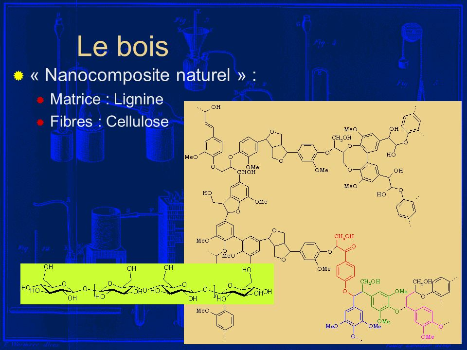 Le bois « Nanocomposite naturel » : Matrice : Lignine