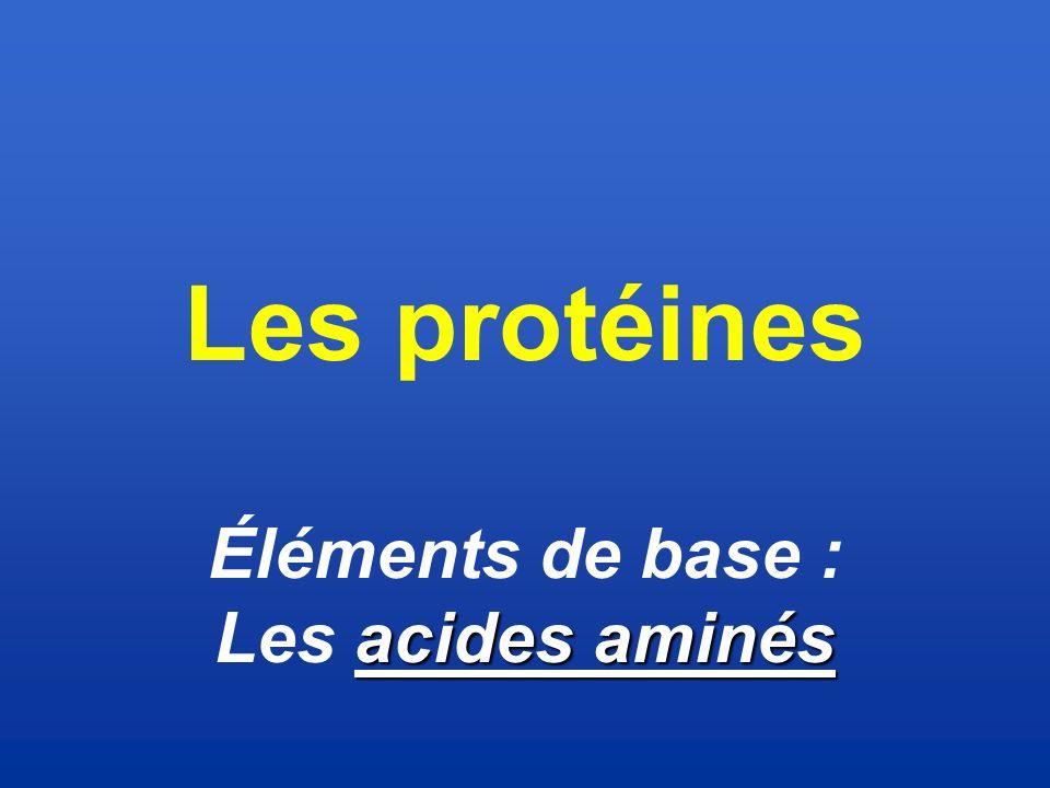 Les protéines Éléments de base : Les acides aminés