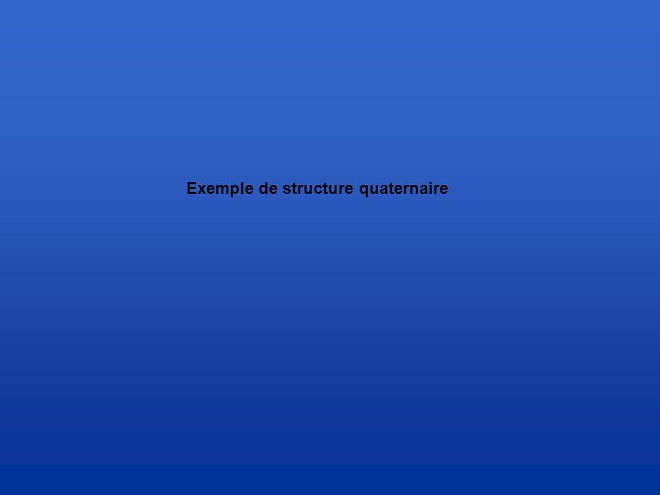 Exemple de structure quaternaire