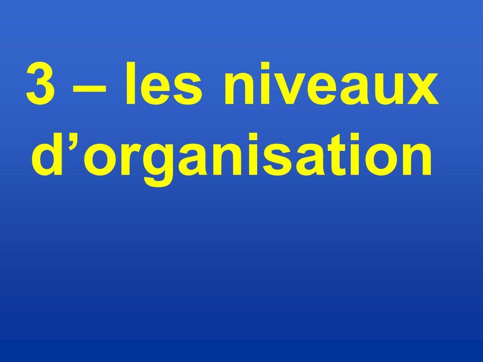 3 – les niveaux d'organisation