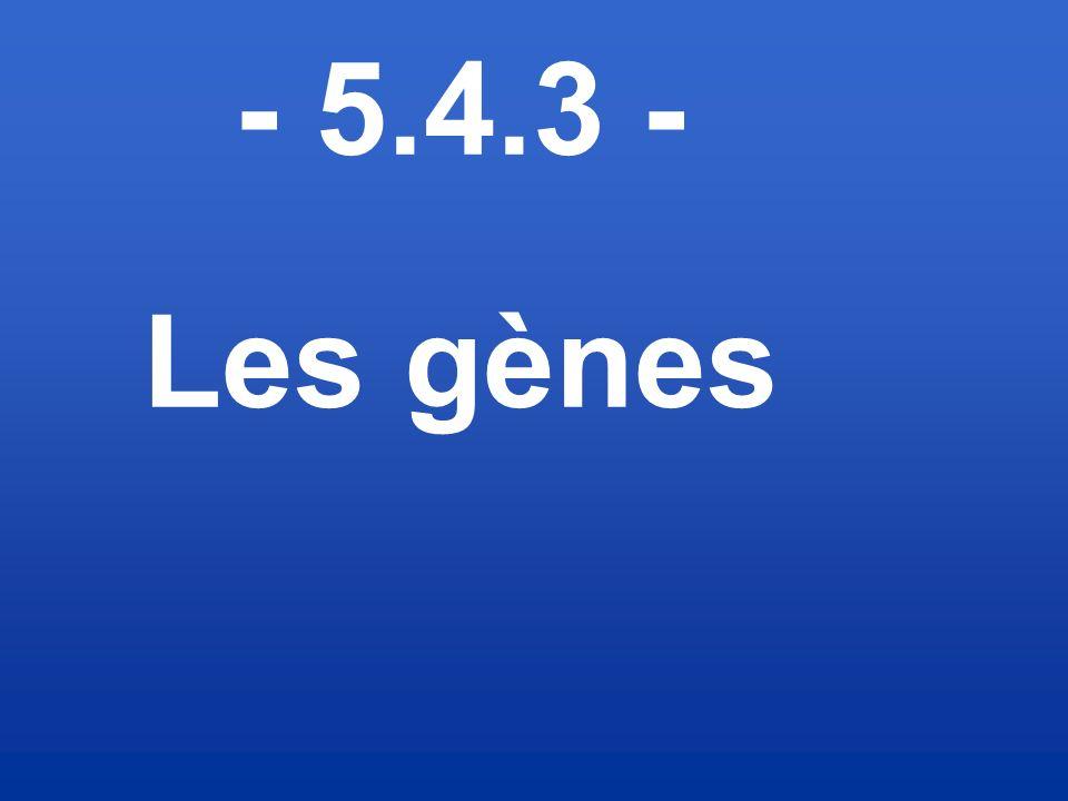 - 5.4.3 - Les gènes