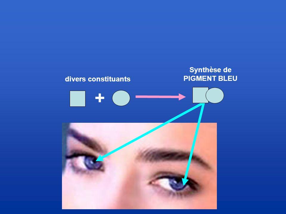 Synthèse de PIGMENT BLEU divers constituants +