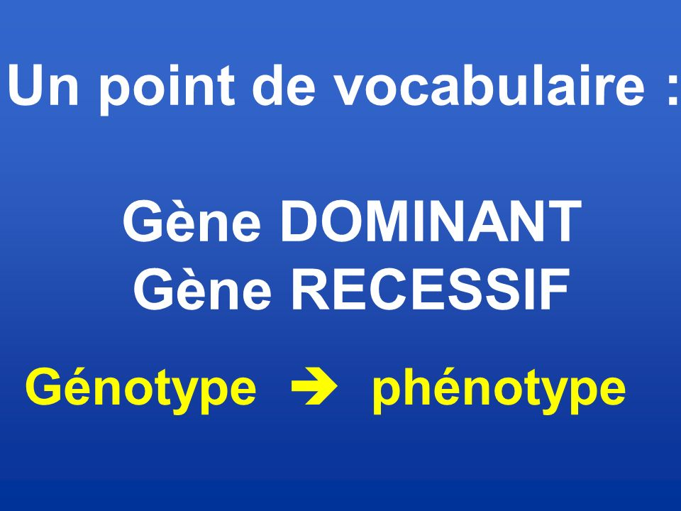 Un point de vocabulaire :