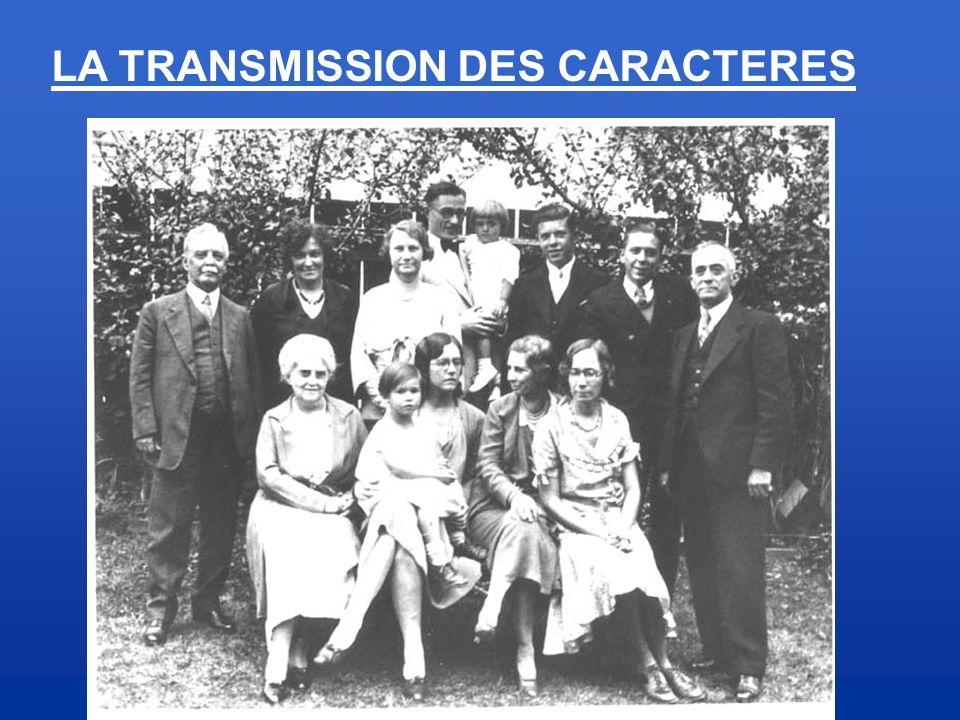 LA TRANSMISSION DES CARACTERES