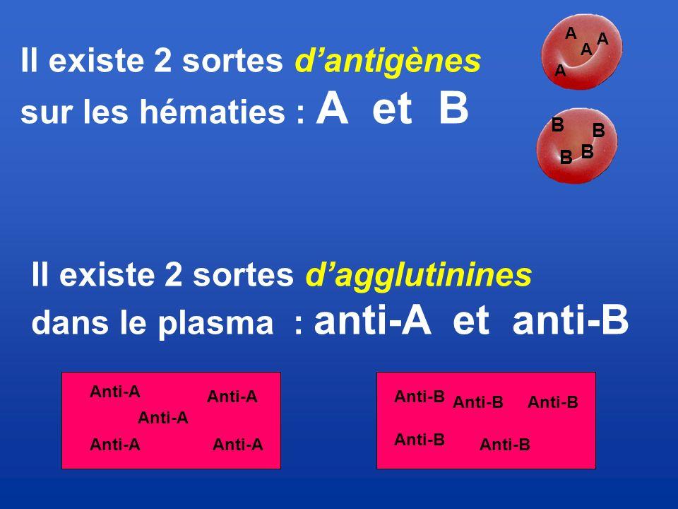 Il existe 2 sortes d'antigènes sur les hématies : A et B