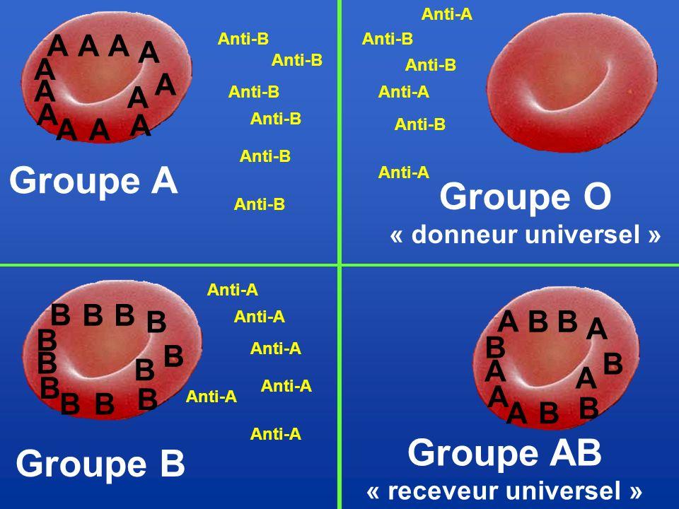 Groupe A Groupe O Groupe AB Groupe B