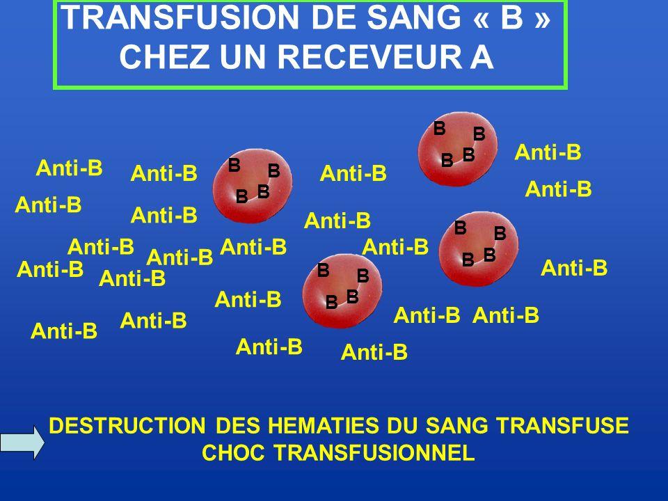 TRANSFUSION DE SANG « B » DESTRUCTION DES HEMATIES DU SANG TRANSFUSE