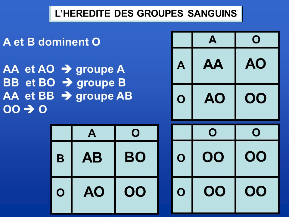 L'HEREDITE DES GROUPES SANGUINS