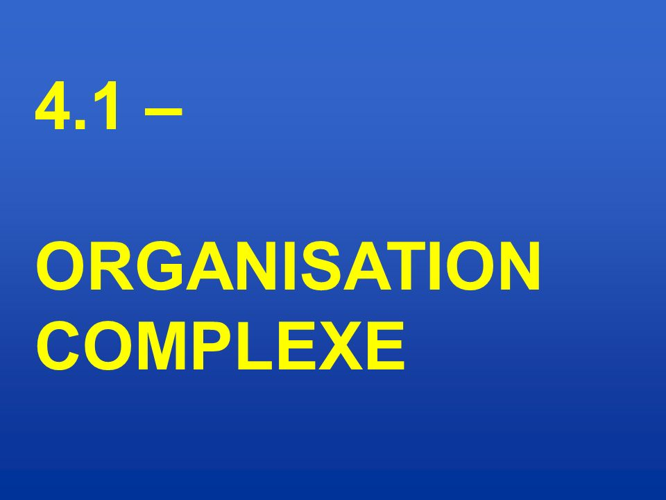 4.1 – ORGANISATION COMPLEXE