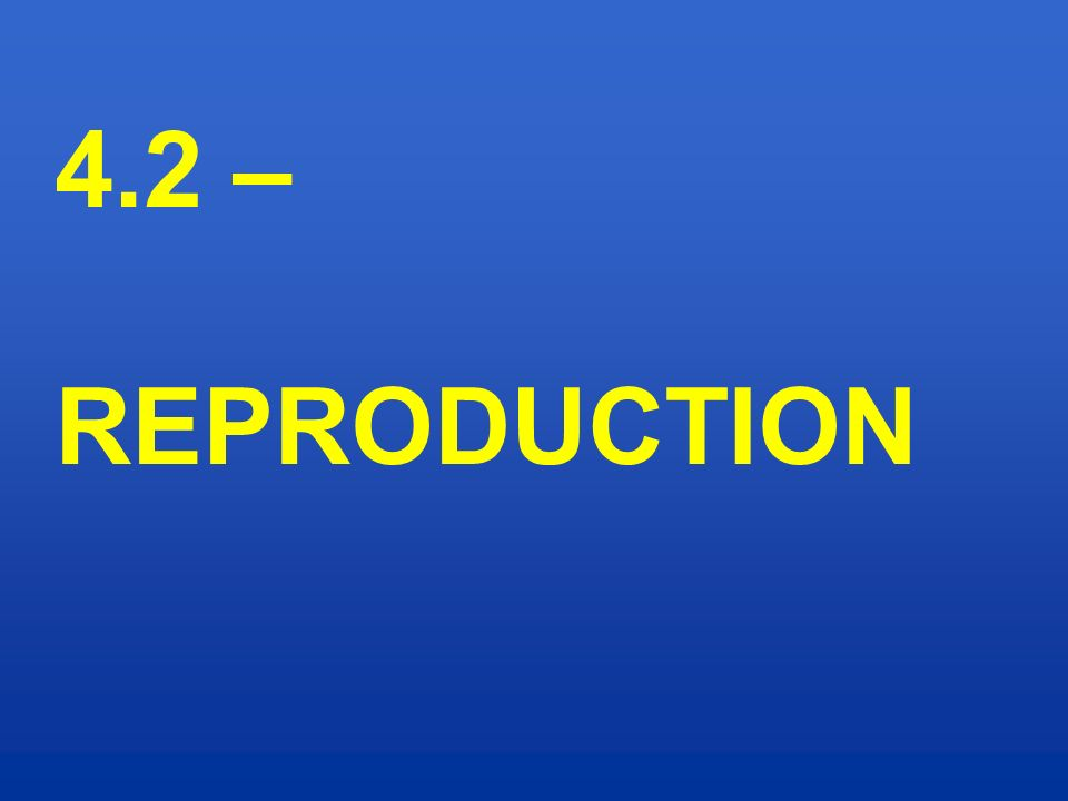 4.2 – REPRODUCTION