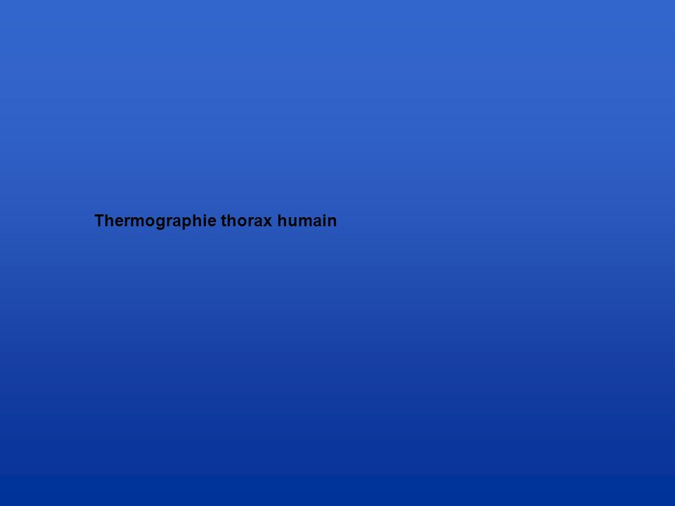 Thermographie thorax humain