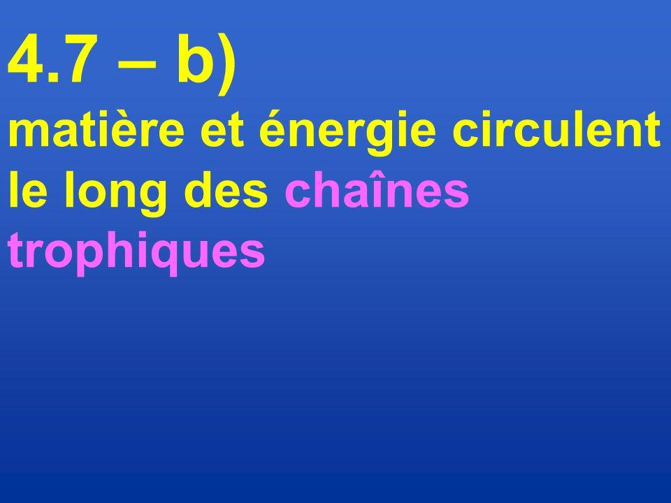 4.7 – b) matière et énergie circulent le long des chaînes trophiques