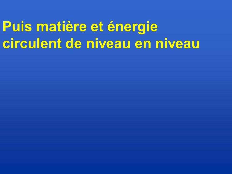 Puis matière et énergie