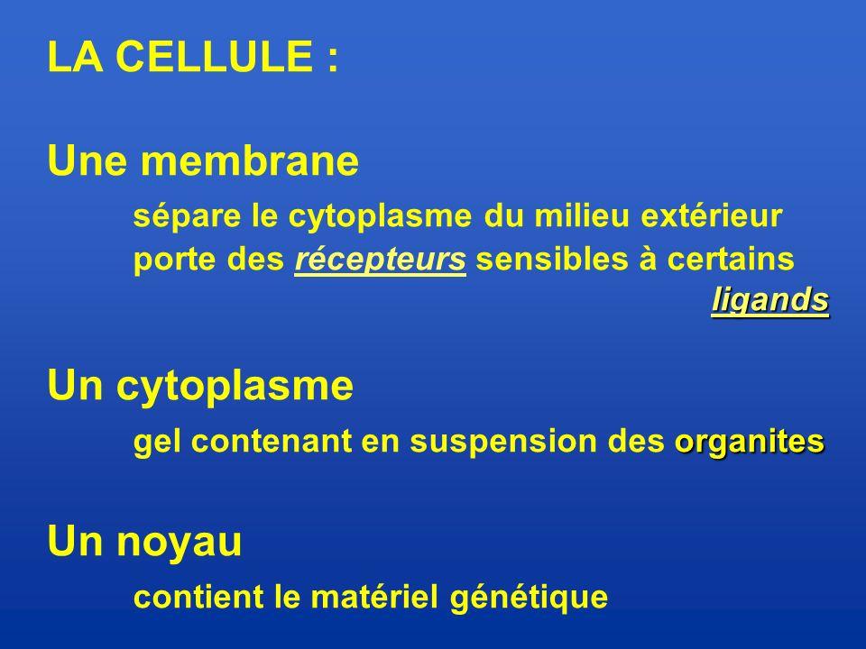 sépare le cytoplasme du milieu extérieur