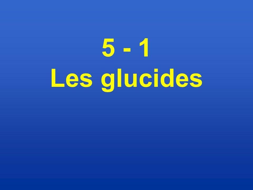 5 - 1 Les glucides