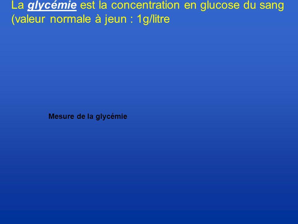 La glycémie est la concentration en glucose du sang