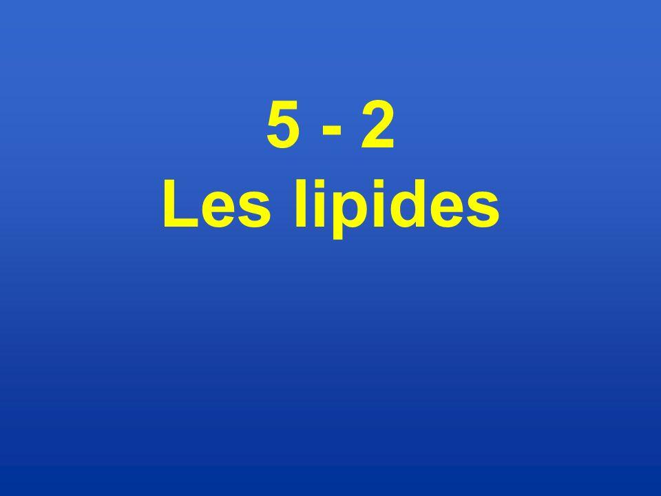 5 - 2 Les lipides