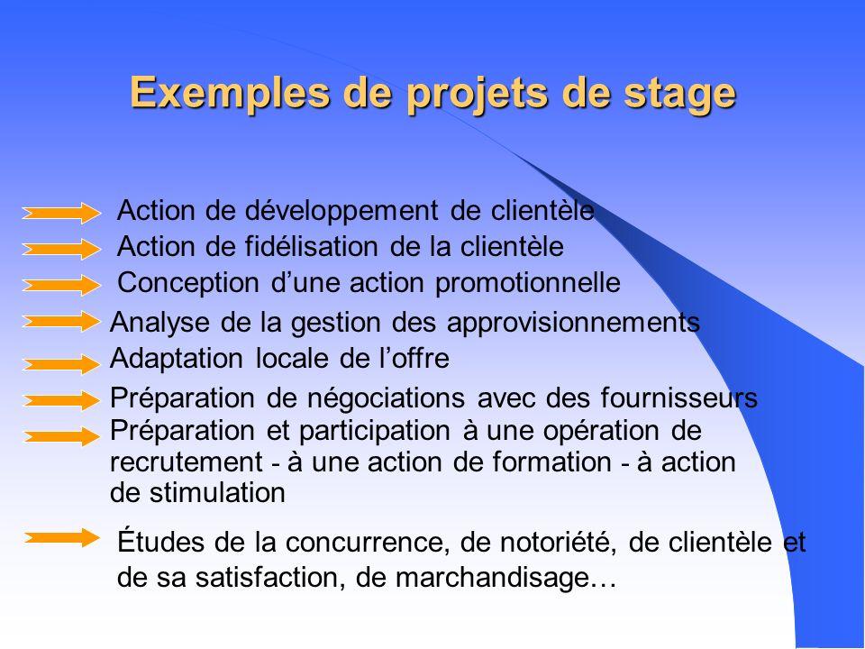 Exemples de projets de stage