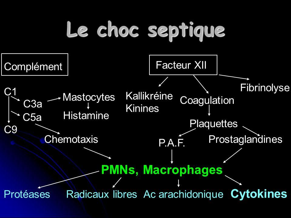 Protéases Radicaux libres Ac arachidonique Cytokines