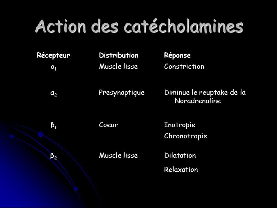 Action des catécholamines