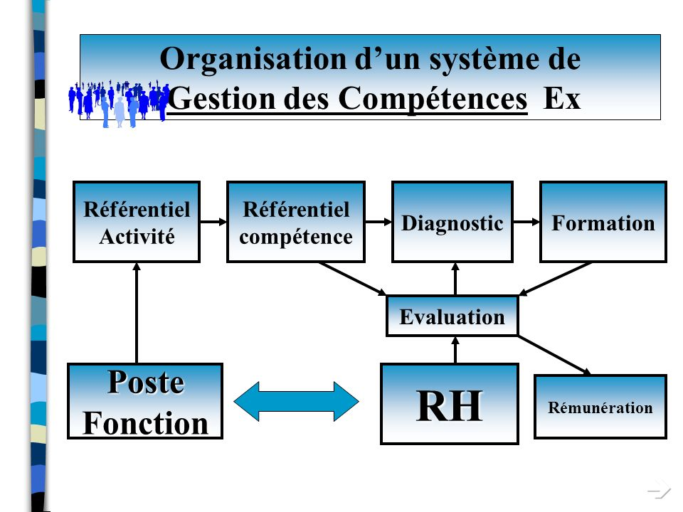 Organisation d'un système de Gestion des Compétences Ex