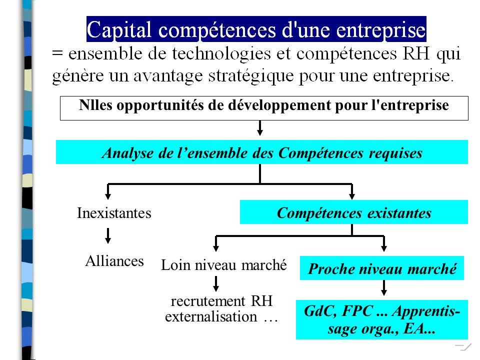  Nlles opportunités de développement pour l entreprise