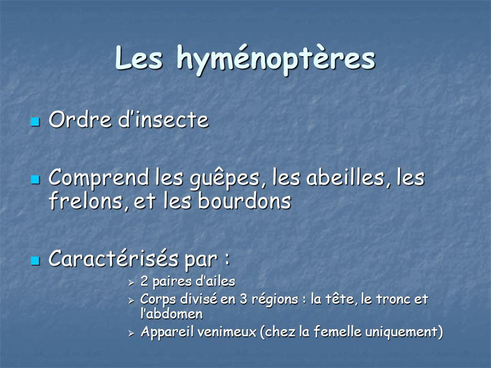Les hyménoptères Ordre d'insecte
