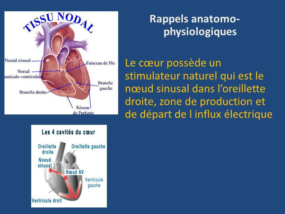 Rappel anatomo-physiologique