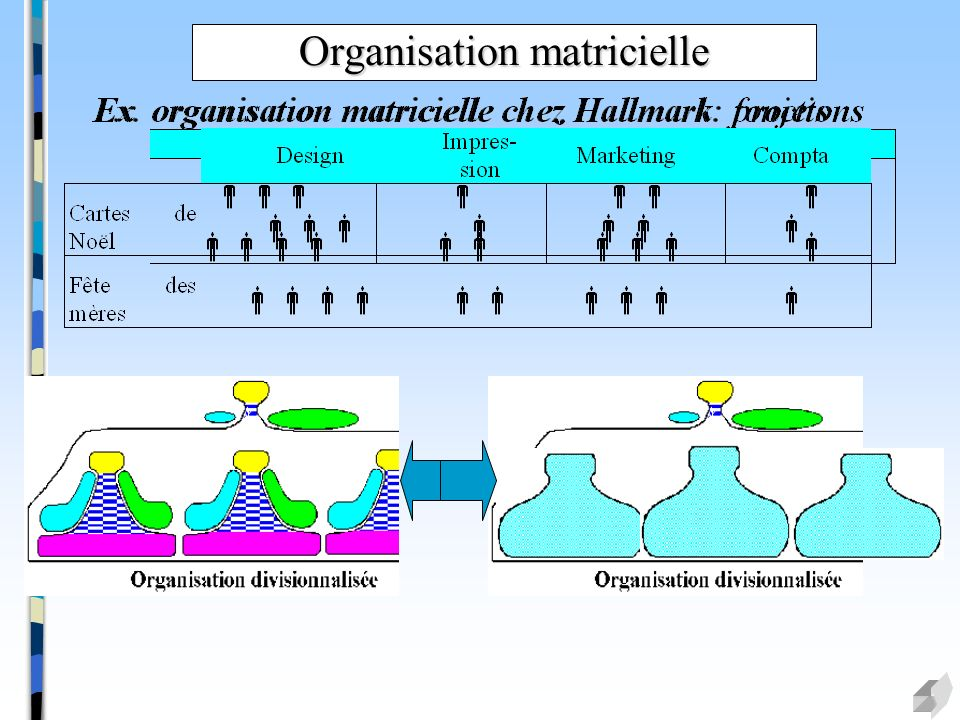 Organisation matricielle