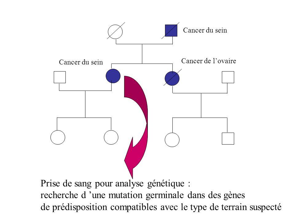 Prise de sang pour analyse génétique :