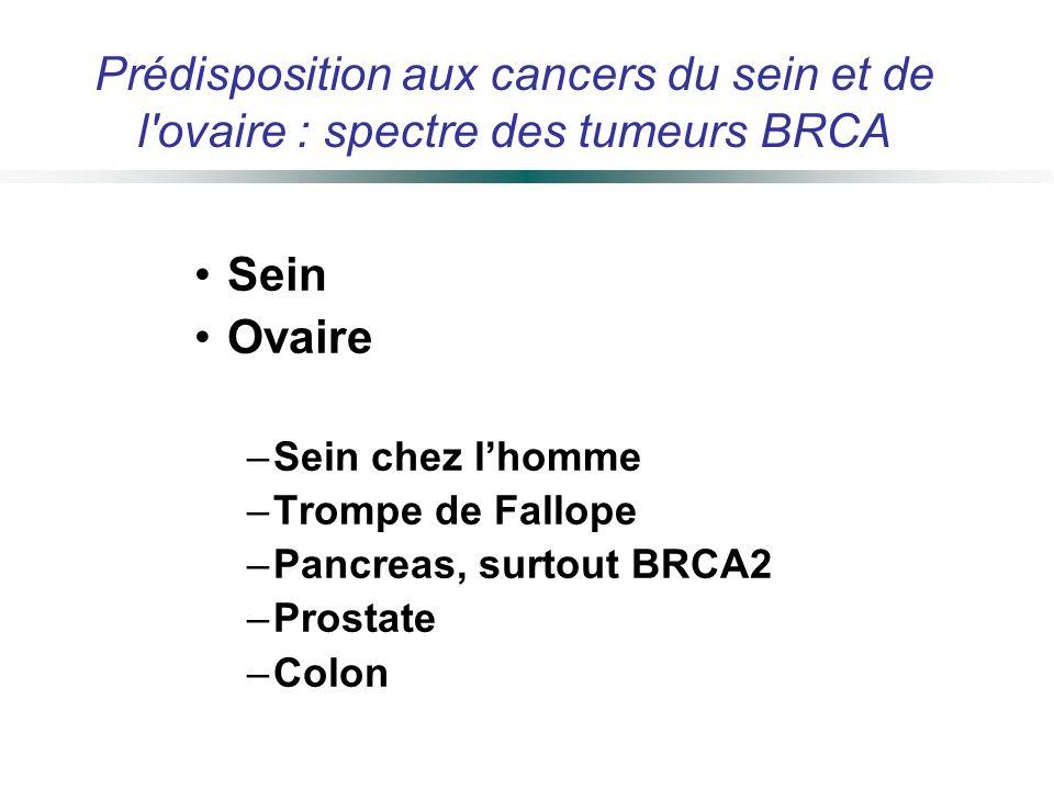 Prédisposition aux cancers du sein et de l ovaire : spectre des tumeurs BRCA