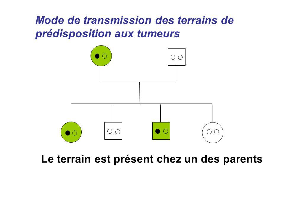Mode de transmission des terrains de prédisposition aux tumeurs