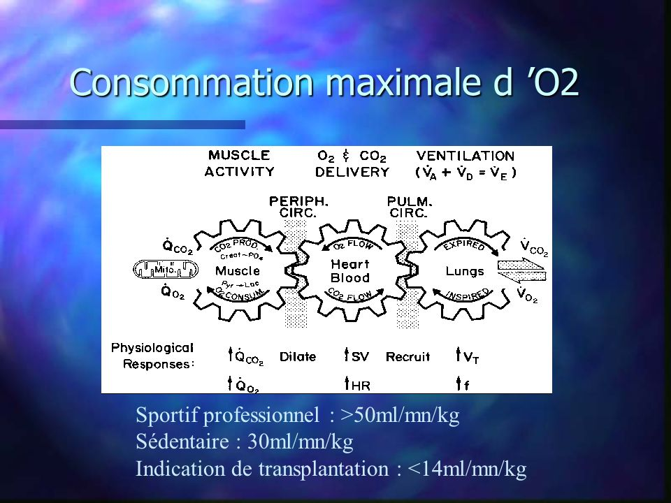 Consommation maximale d 'O2