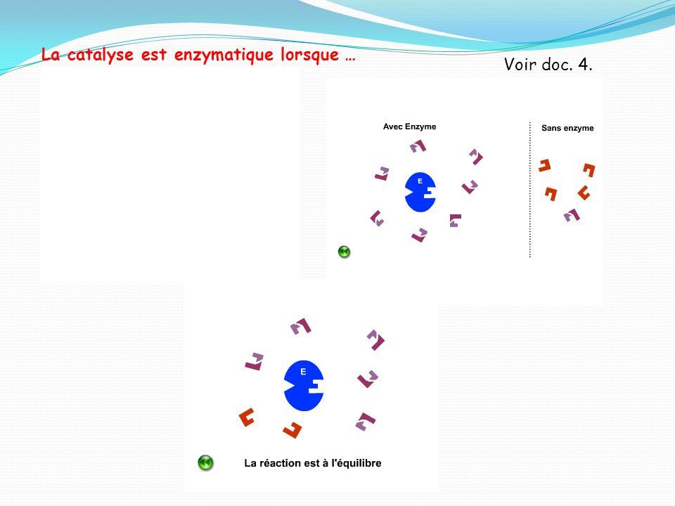 La catalyse est enzymatique lorsque …
